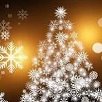 Local Christmas Specials